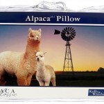 Alpaca Pillow